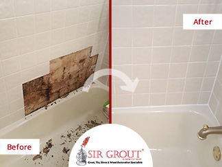 Before and After Picture of a Bathroom's Moldy Tile in Dallas, Texas